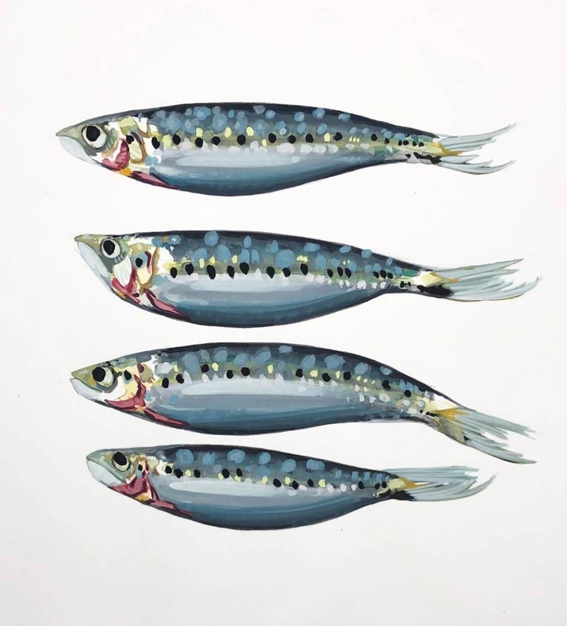 4_sardines.jpg