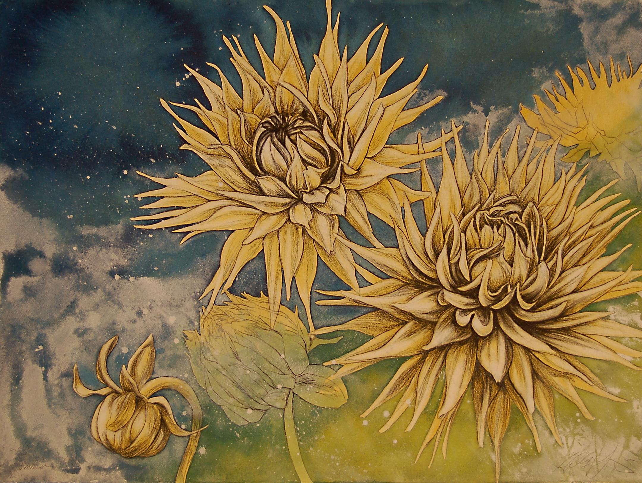 "Commission ""Summer Dahlias"" drawing. 22""x30"""