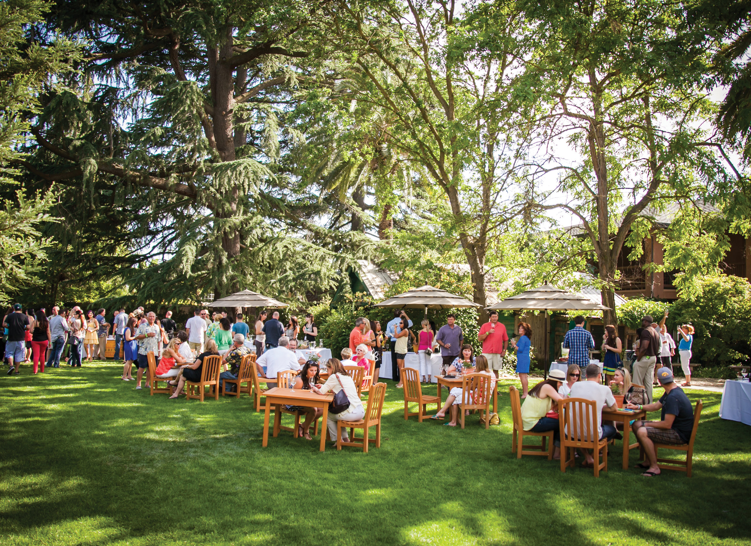 photo of the wedding garden with people mingling at an event