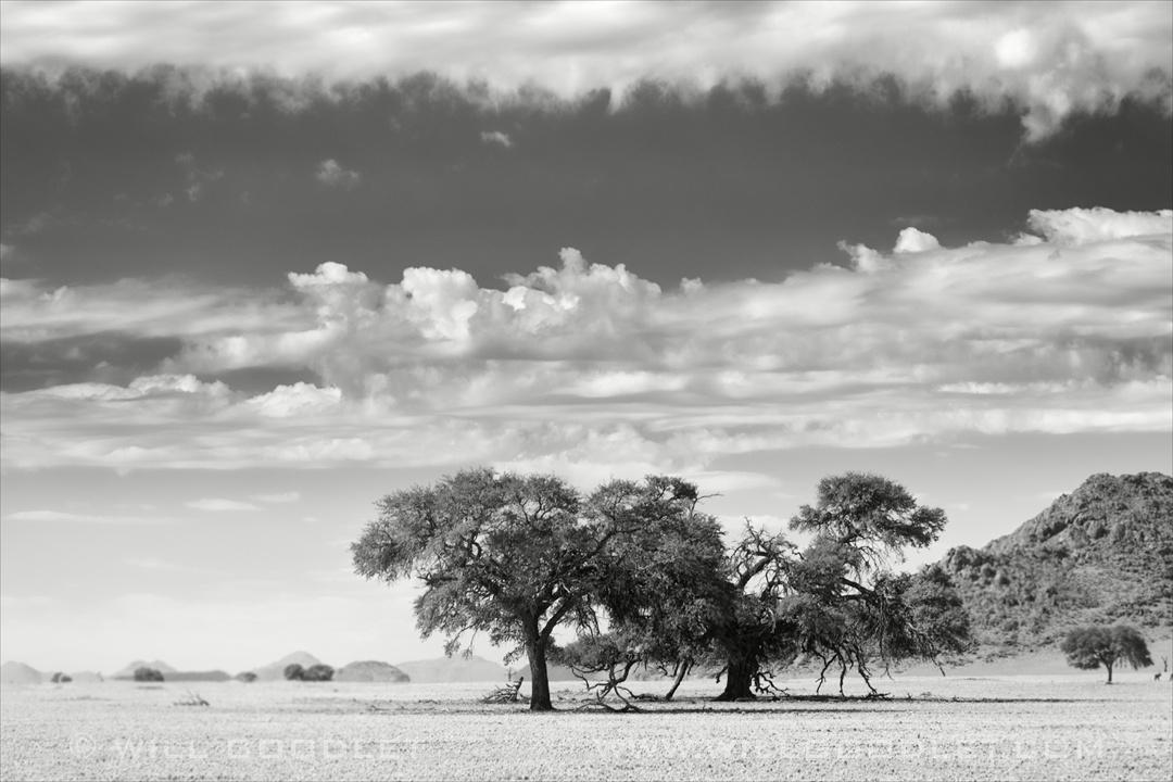 D707 Namibia, Landscape on the roadside