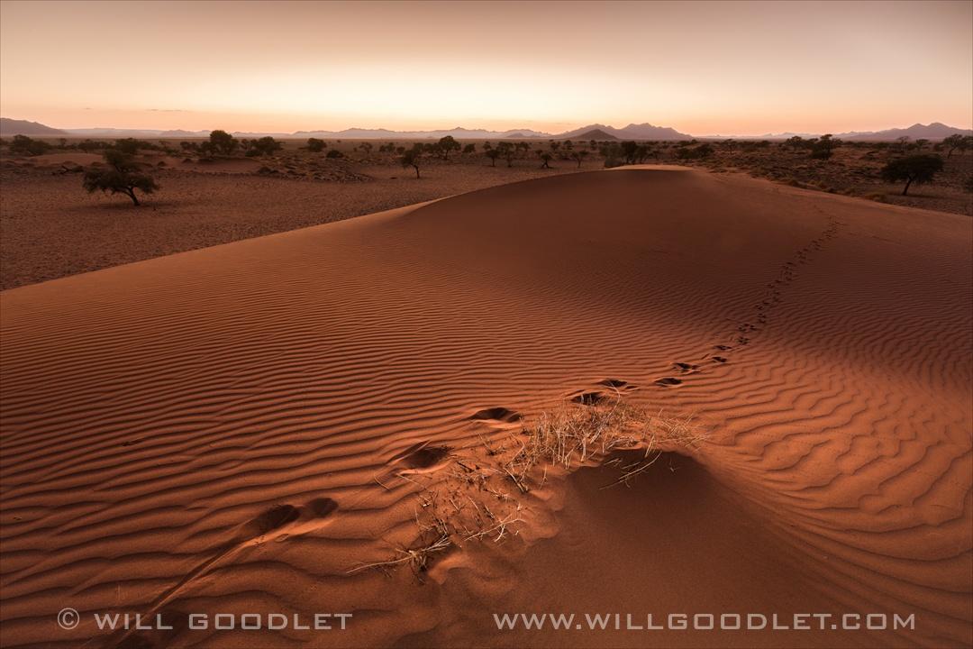 Namibrand Nature Reserve, sunrise over the dunes.