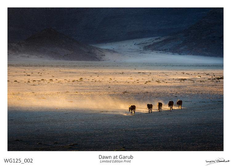 Dawn at Garub