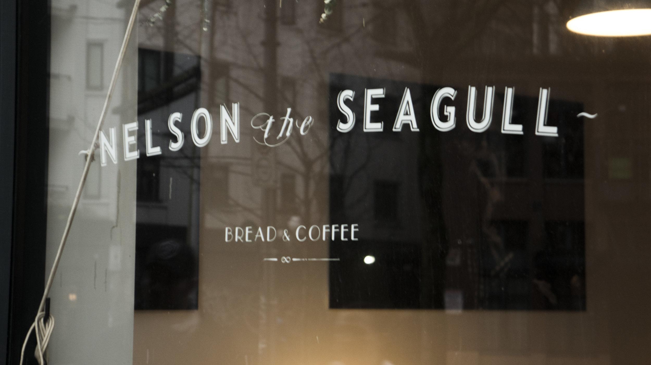 nelson_the_seagull_final.1022.jpg