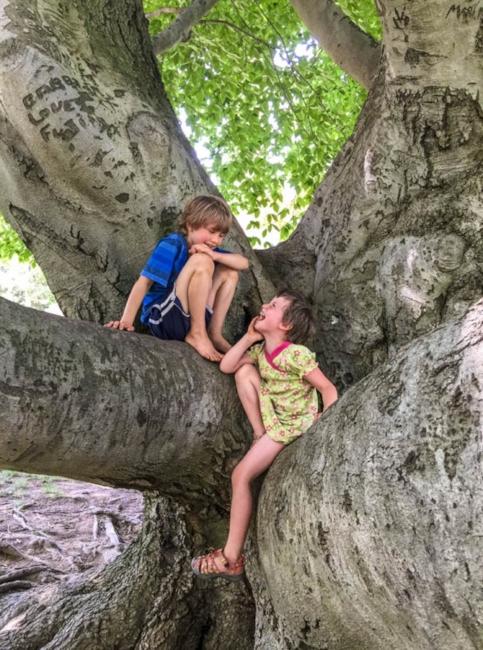 Tree with Kids.jpg