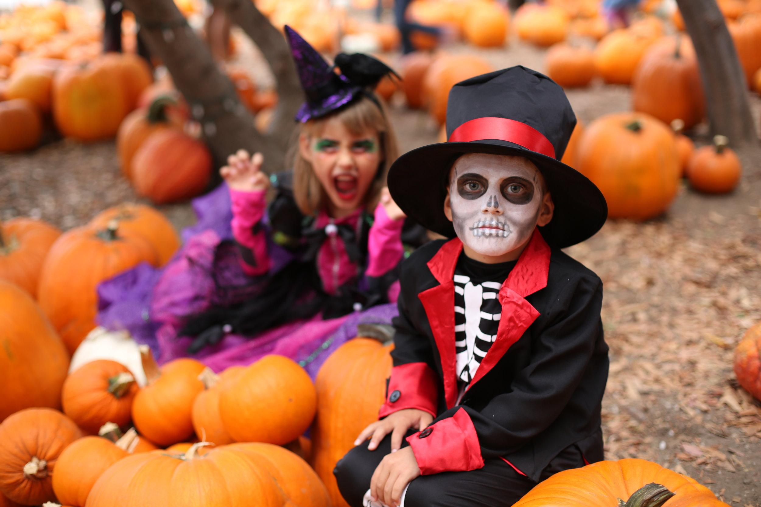 Kids on Pumpkins.jpg