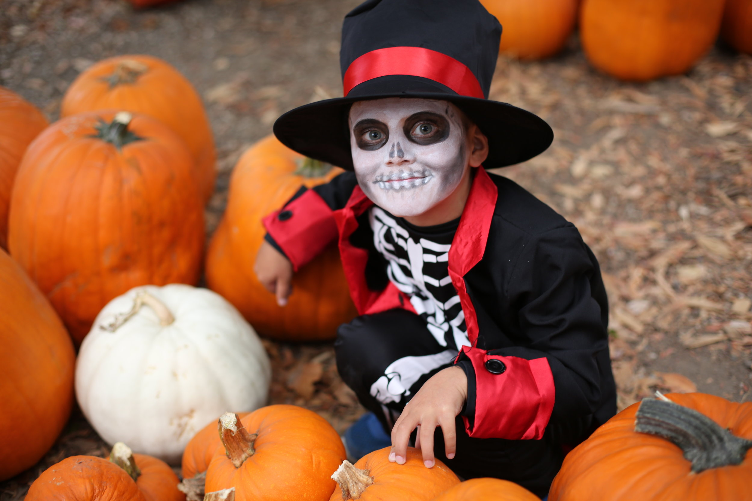 boy with pumpkins.jpg