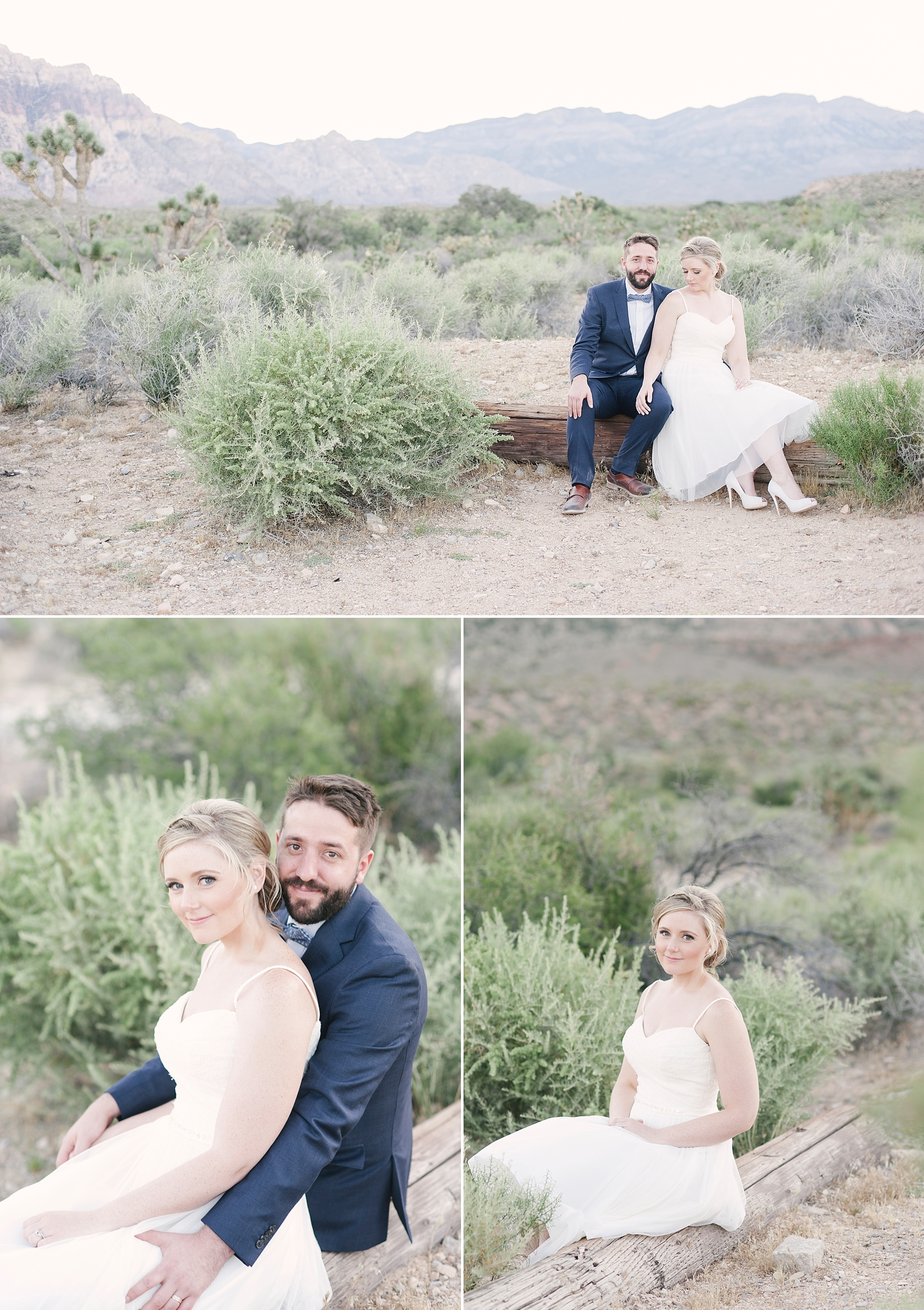 Las_Vegas_Neon_Museum_Wedding_desert_elopement-19.jpg
