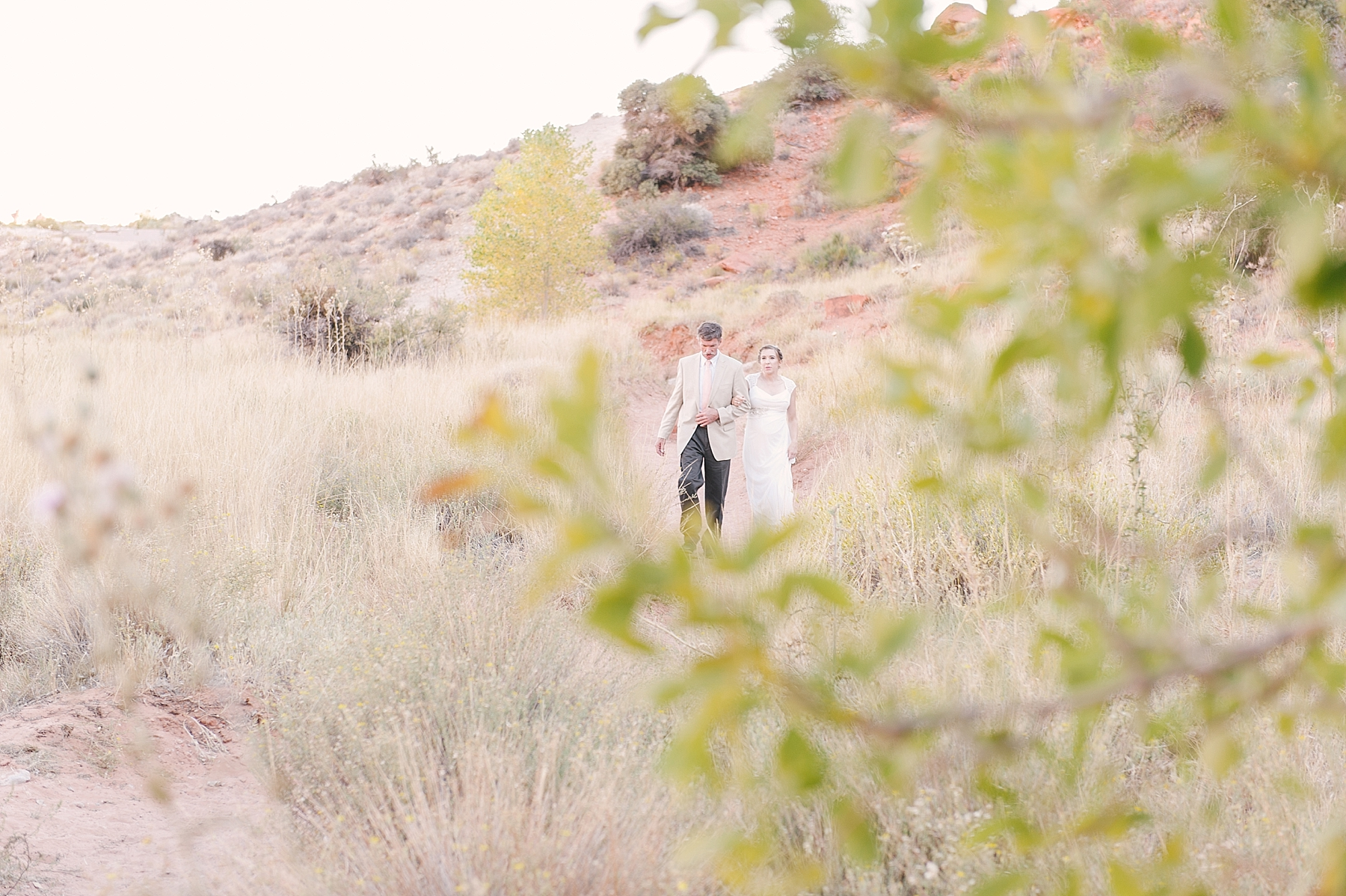 Red_Rock_Canyon_Wedding_las_vegas_Photos_blog-02.jpg