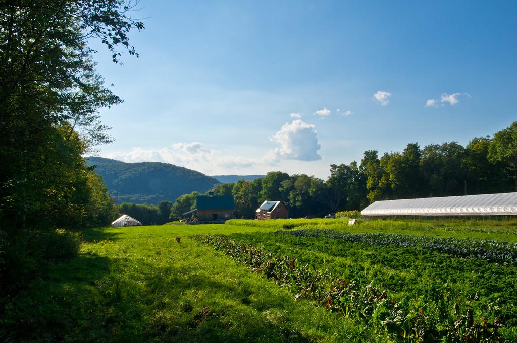evening-song-farm-kara-ryan
