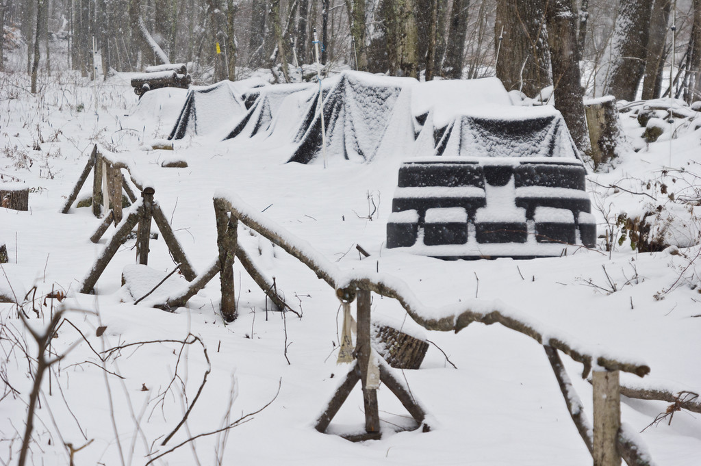 Shiitake mushroom log stacks covered under the snow.  Photo by Adam Ford