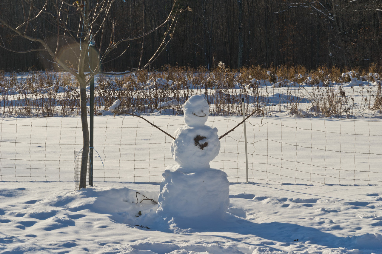 my mom built a snowman with all the grandkids during Thanksgiving week, photo by Adam Ford