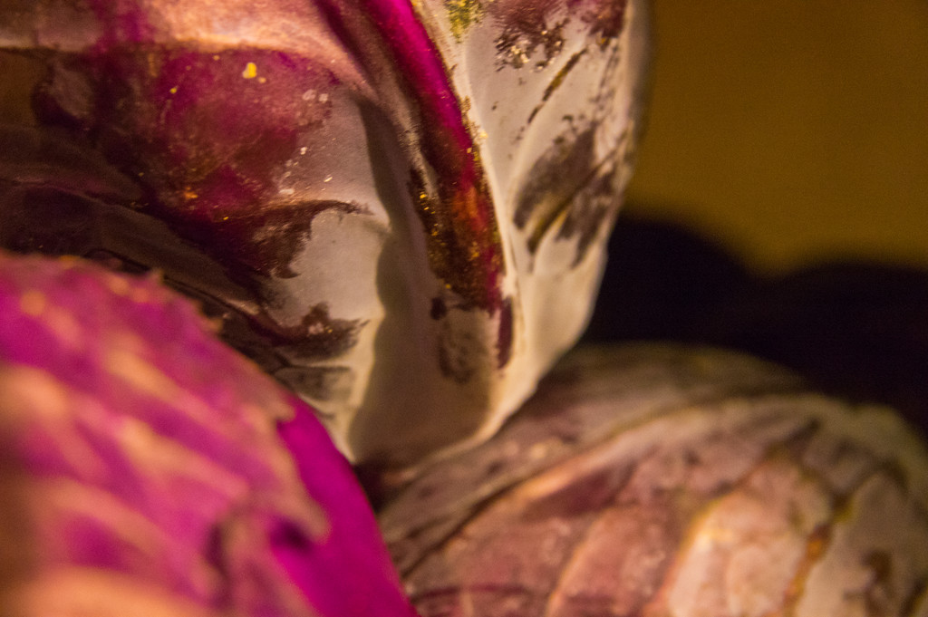 red cabbage, photo by Adam Ford
