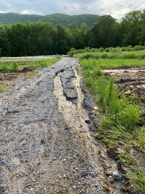 driving lane in one of our fields that failed, photo by Taylor Morneau