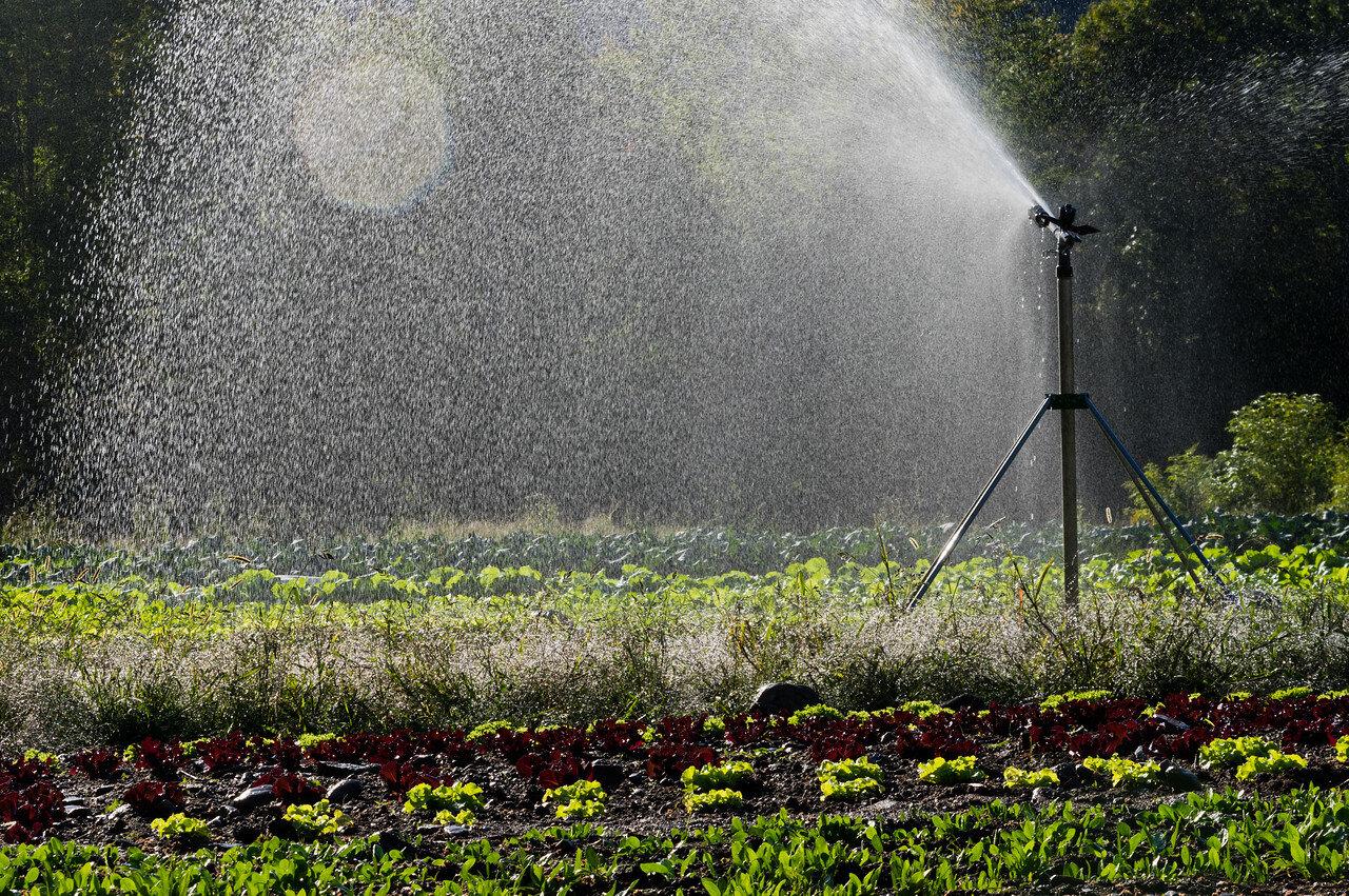 more irrigation gun art, photo by Adam Ford