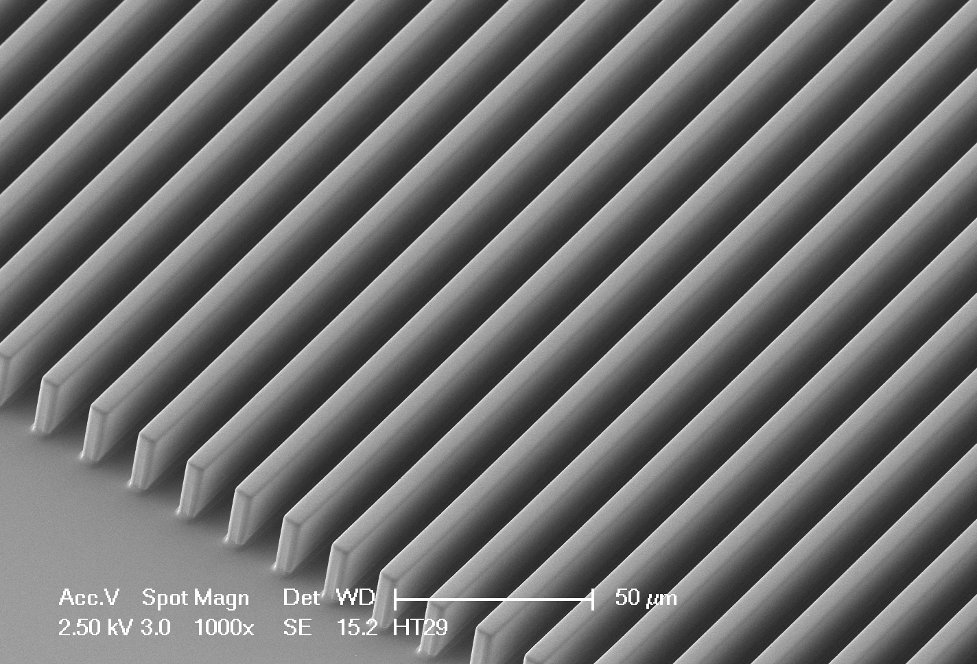 Scanning electron micrograph of a micro contact printing stamp (PDMS)