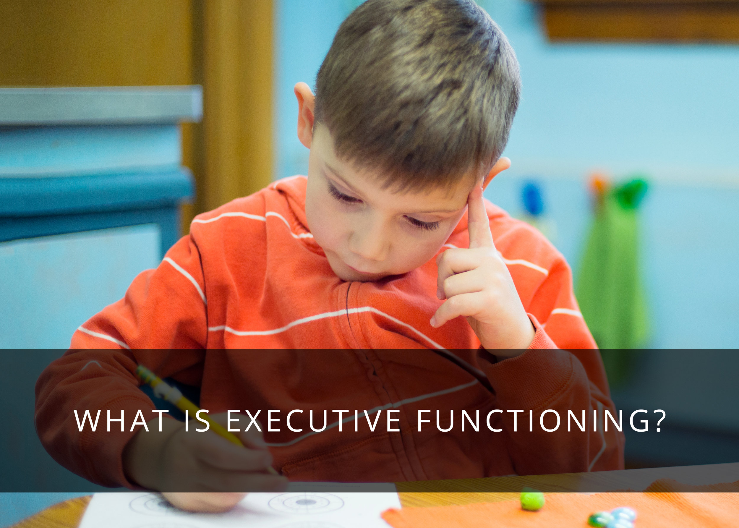 Executive Functioning: What is It?