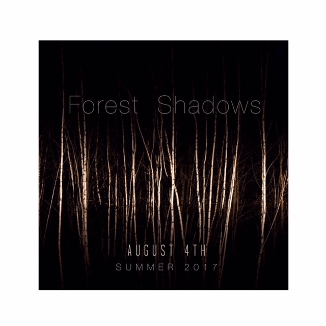 Forest Shadows - Take a walk into darkness where doubt and inner conflict dwell. Confront fear and befriend sorrow. In this realm of courageous torment, creation is born a victor, a light. Artists; Rickie Barnett (Ceramics), Gareth King (Photography), Mark Smeltzer and Kris Bruders (Freight Train Rabbit Killer) guide the path of forest shadows. Opens Aug. 4th through Oct. 6th, 5-9 on First Fridays.