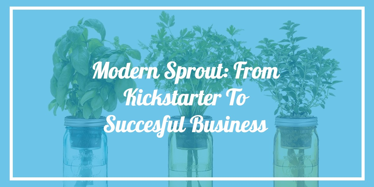 modern-sprout-kickstarter-to-successful-business.jpg