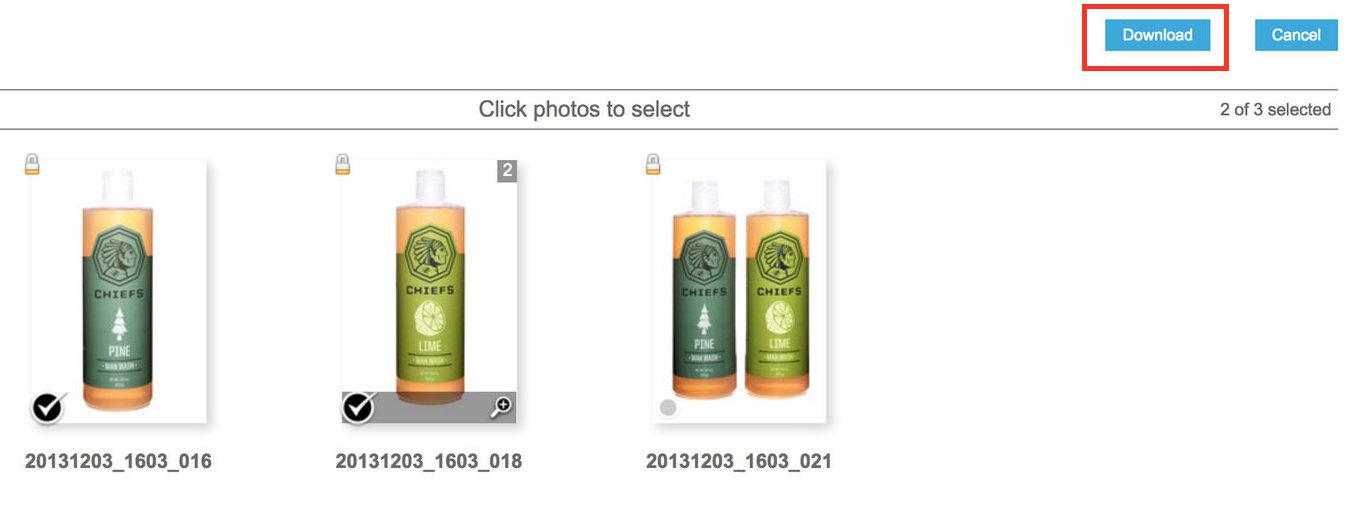 B Step 3 - Zenfolio Download Select Photo.jpeg