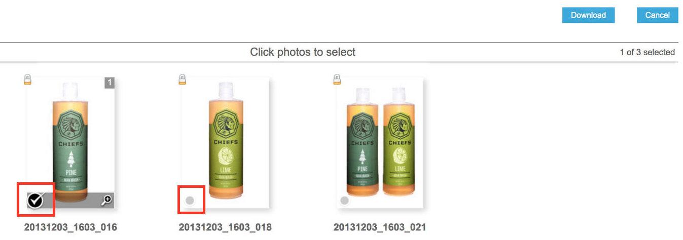 B Step 2 - Zenfolio Download Select Photo.jpeg