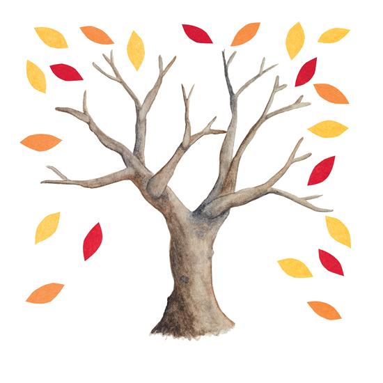 Matheson-Christie-TreeMagic-28.jpg