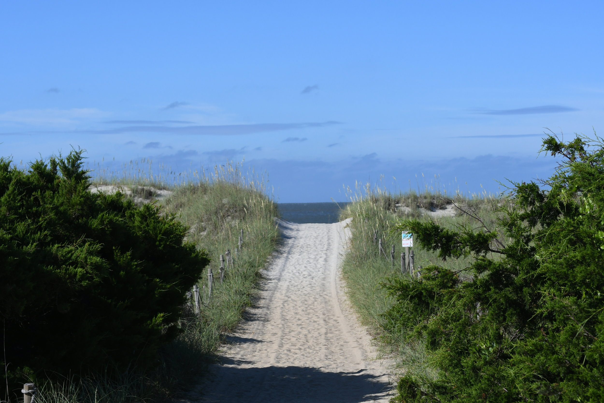 Path to the beach