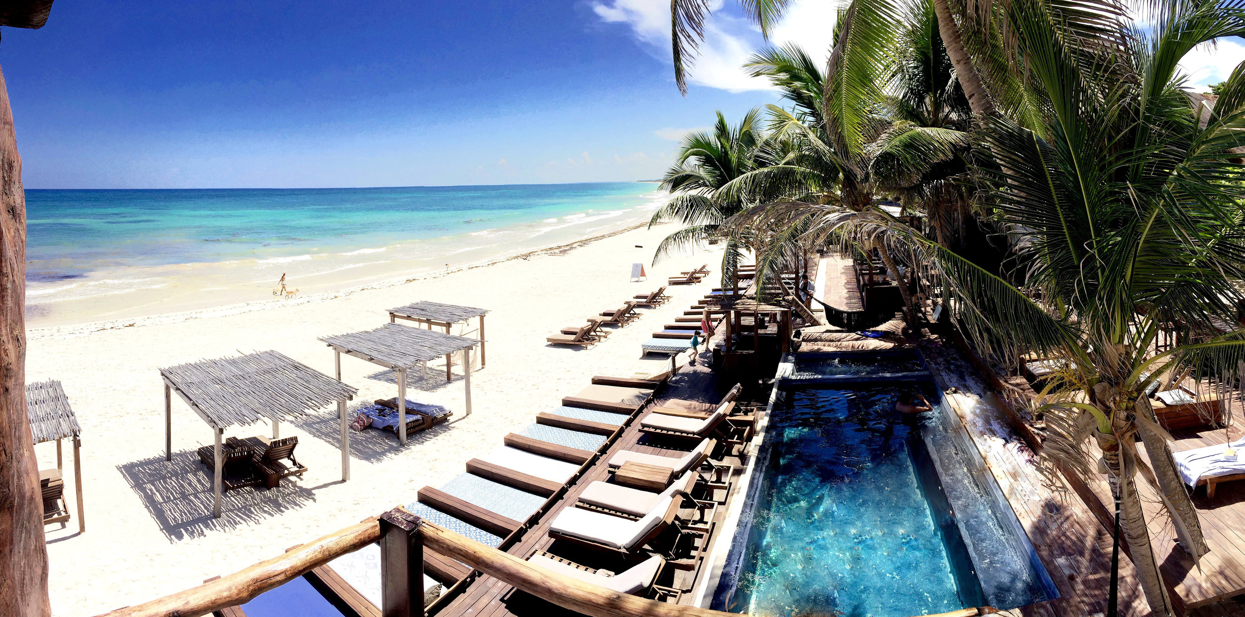 Beachfront Pool Terrace.jpg