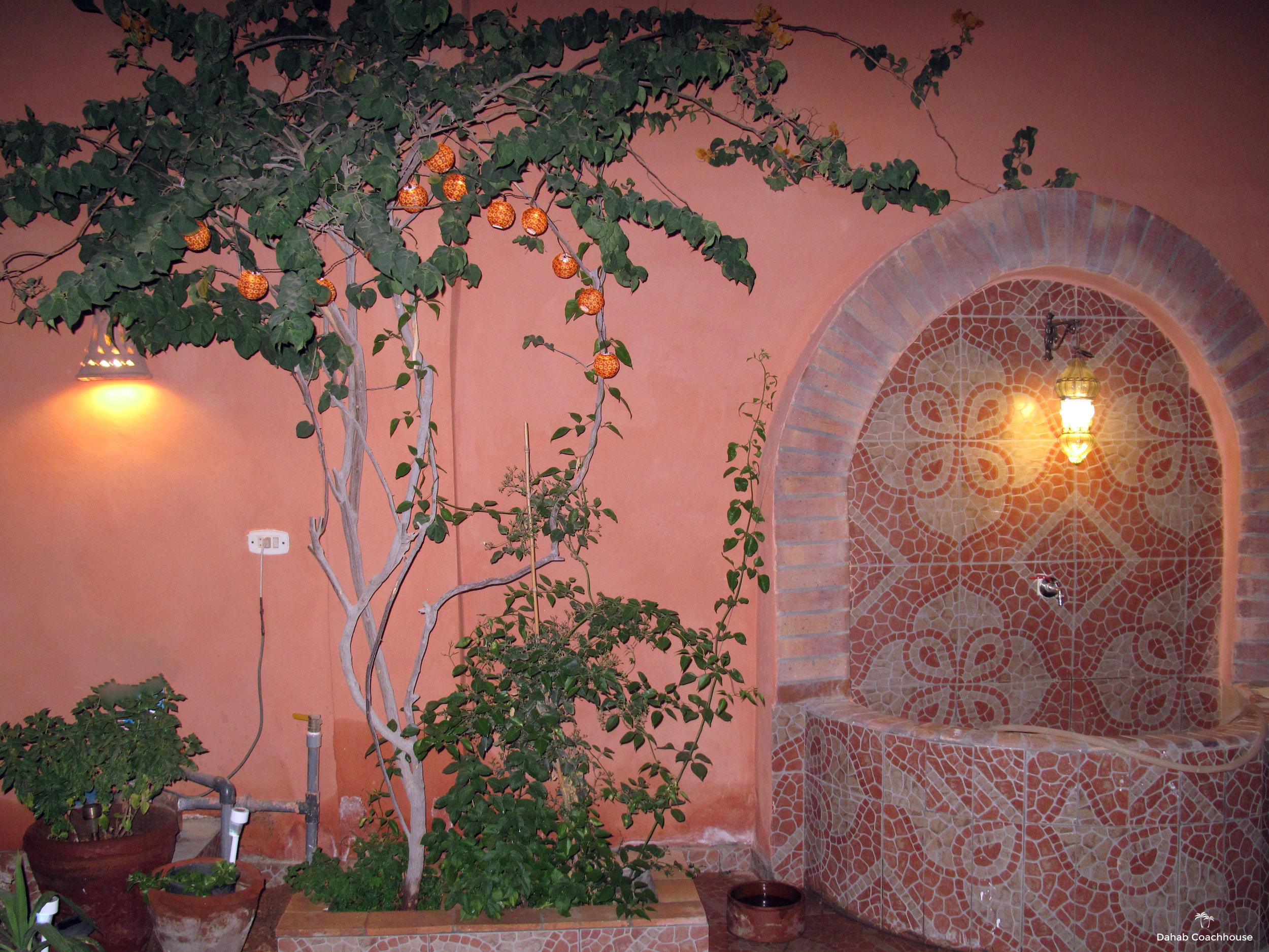Dahab_Coachhouse_courtyard_hotel_guesthouse_beach_diving_sea_Egypt_garden_lights_Egypt.JPG