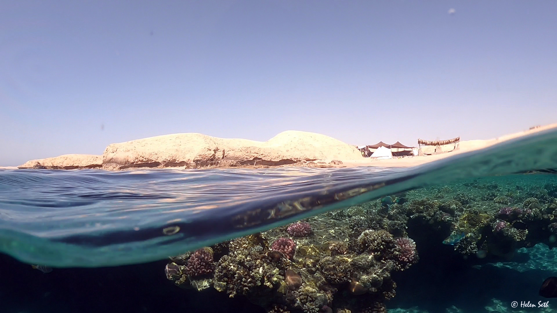 Ras Mohammed_Moon_stars_Egypt_Sinai_Dahab_Coachhouse_Coral.jpg