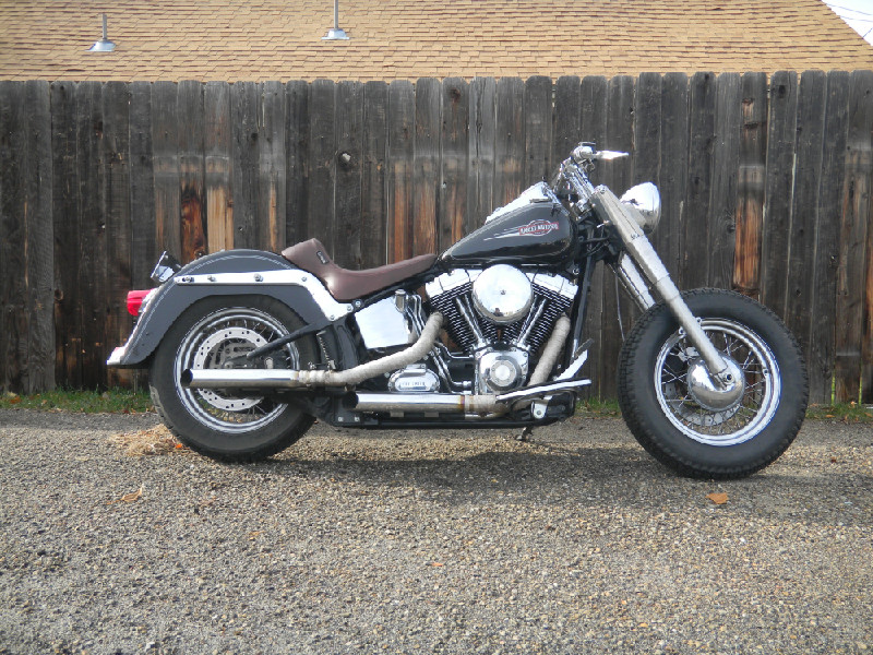 Andy's 2007 Softail