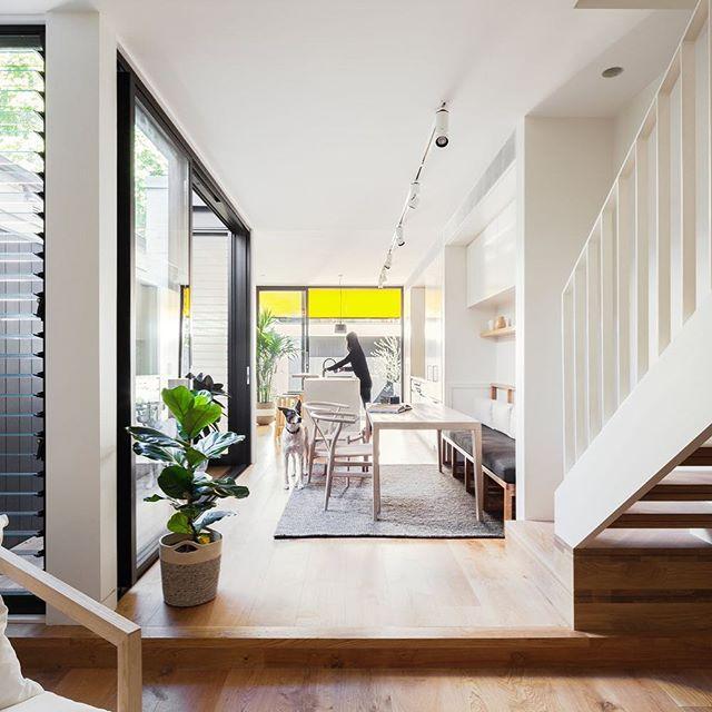 Surry Hills life  @michael_cumming_architect 2015  #australianarchitecture #sydneyarchitecture  @sdastructures  Photo @_katlu  @mcmhouse  @gardenlife_syd  @project82  @artedomus  @euroluce_lighting_australia
