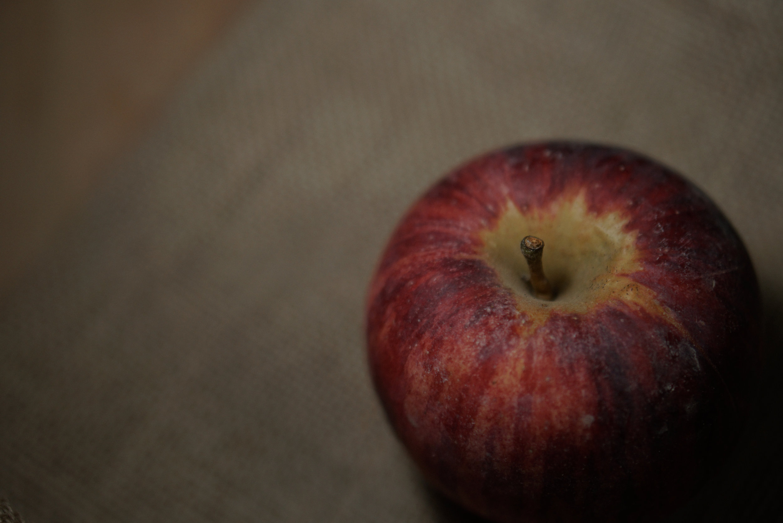 Apple+Food+Photography+Orangeville.jpeg