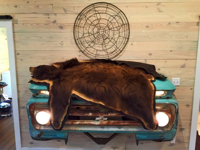 There's just something about road kill that demands preservation.