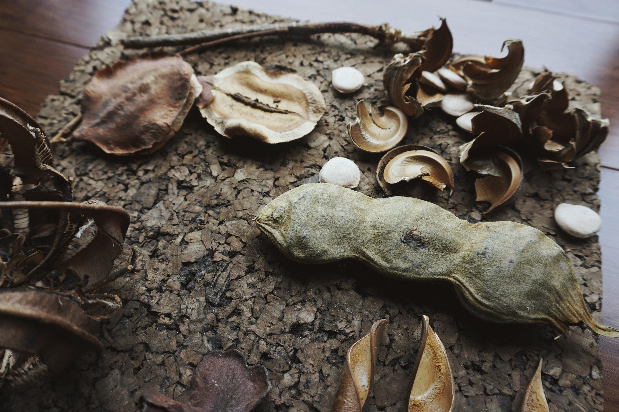 Arca|Deco se inspira en lo que les rodea, desde las semillas que adornan los suelos hasta la chatarra que adorna las calles. En la esquina superior derecha se ven los restos de la semilla que explotó.