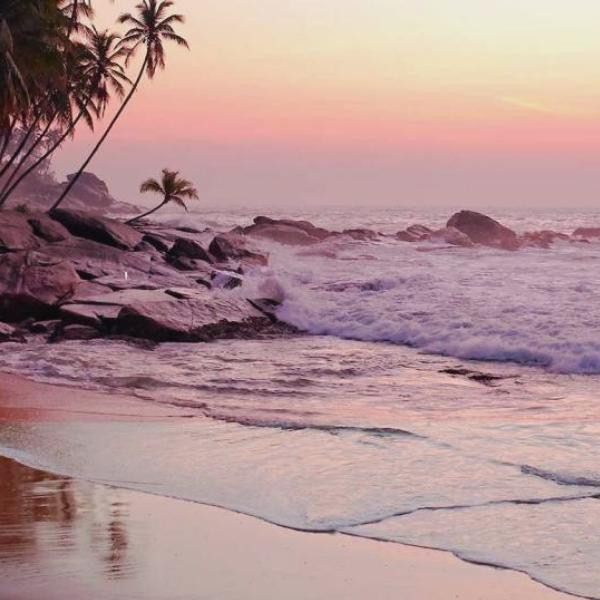 coastal (2).png