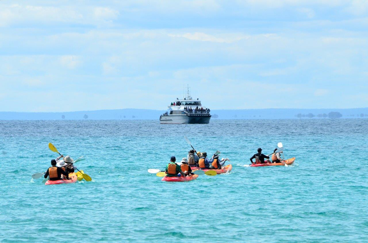 Kayak Tour October.