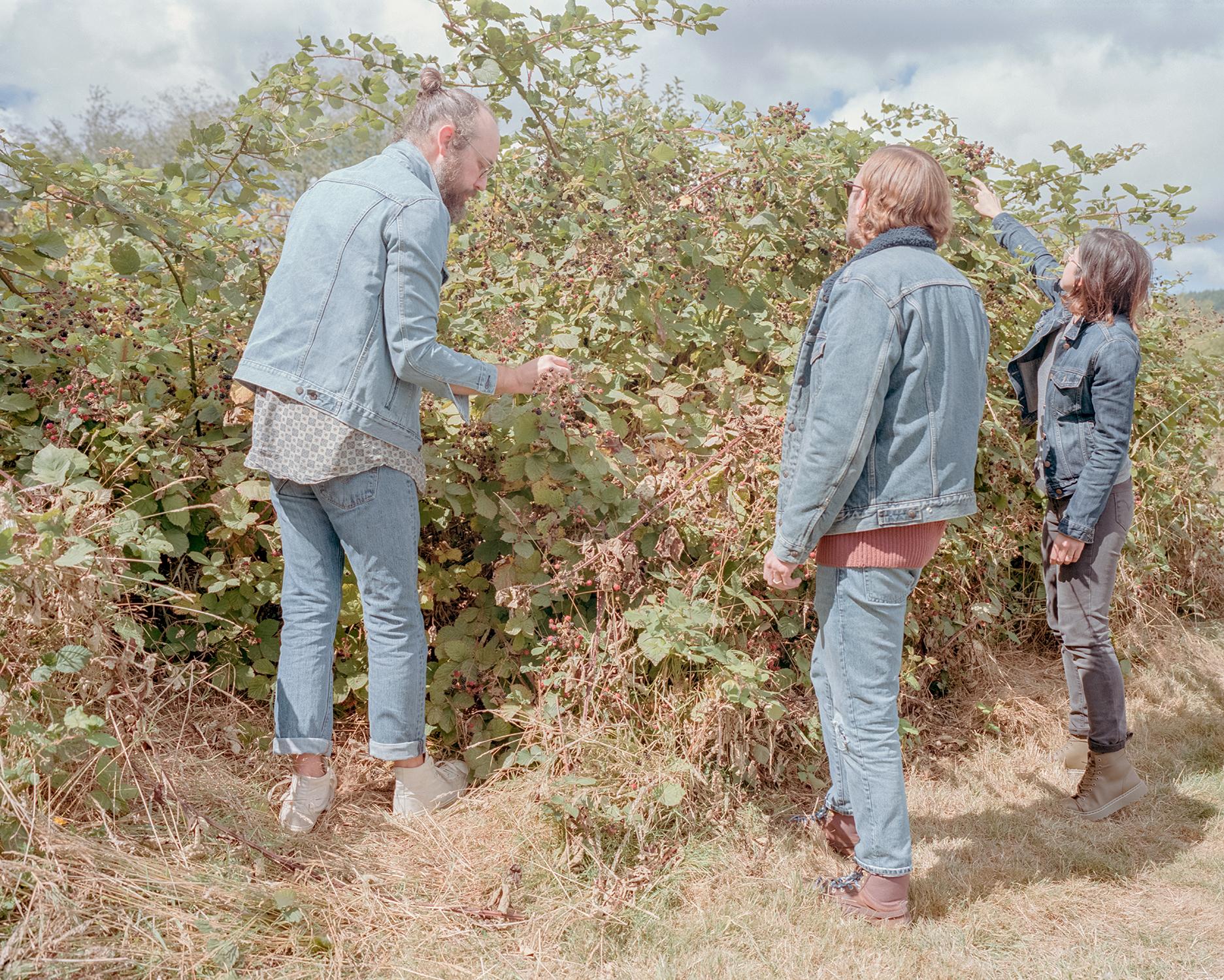 Berry picking in all denim/Raymond WA - September 2018