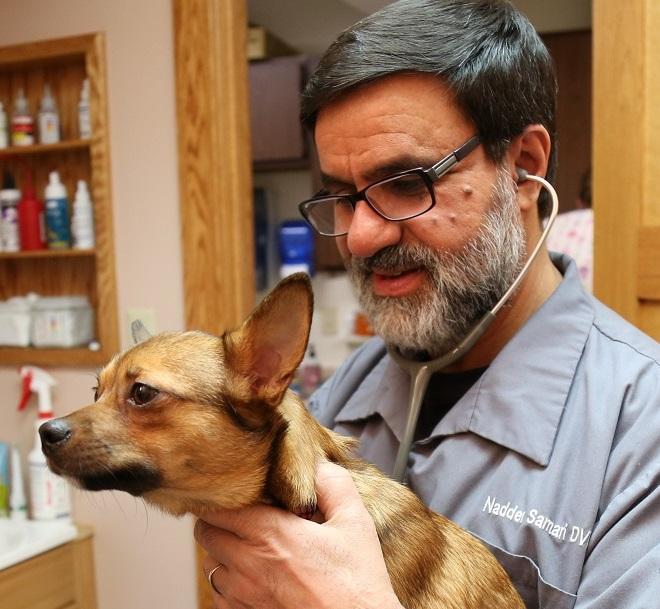 Dr. Samari has many years of veterinary experience.
