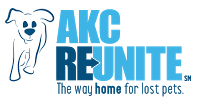 reunite-two-blue-color-logo_1_orig.png