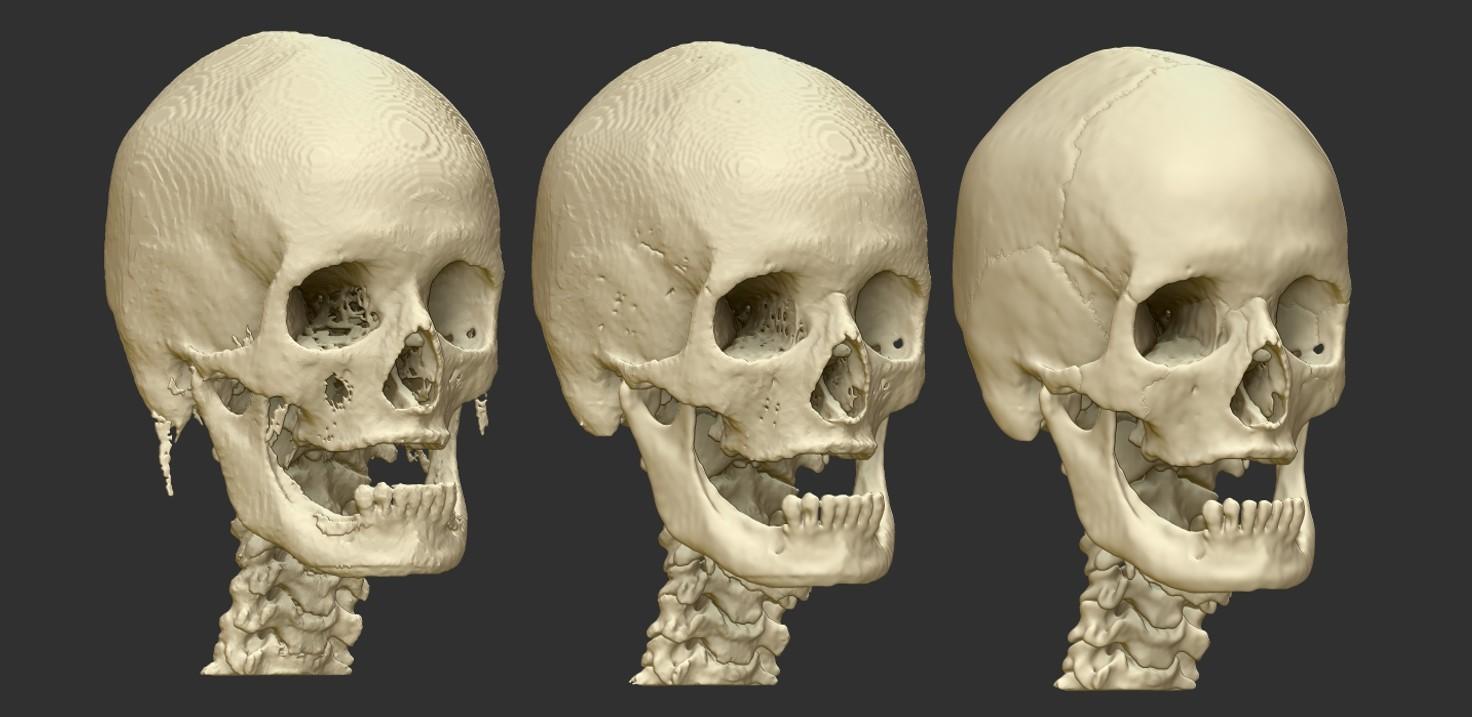 Skull Progress.jpg
