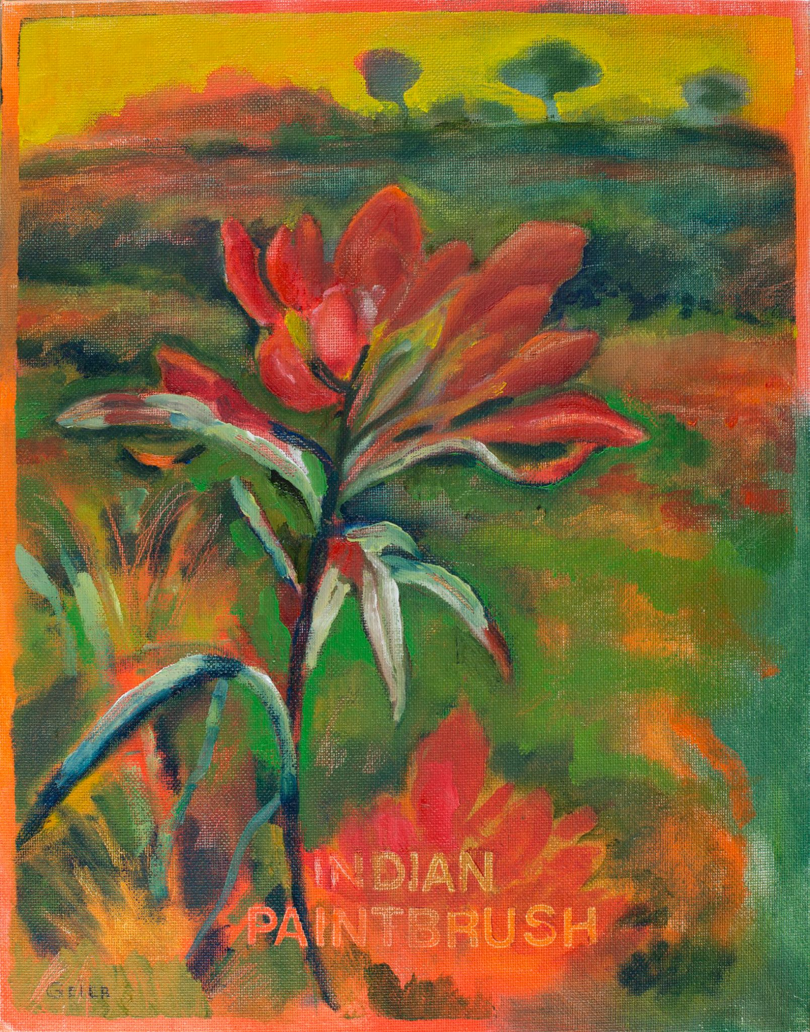 glicee_indian_paintbrush.jpg