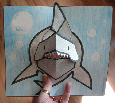 shark-4.jpg