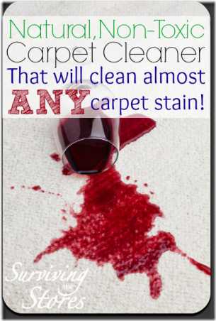 Carpet Cleaner from Surviving the Stores