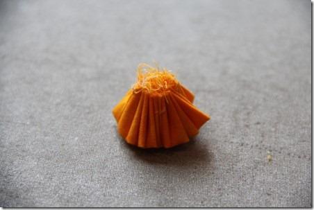 daffodil 19