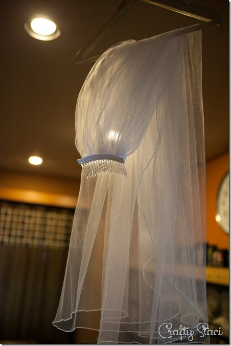 Codi's Veil hanging - Crafty Staci
