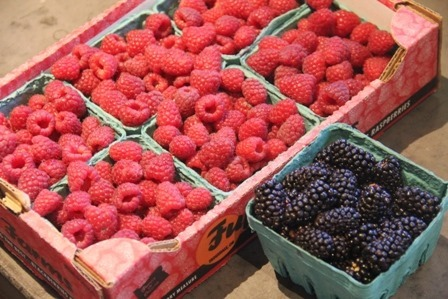 Oregon Raspberries and Blackberries