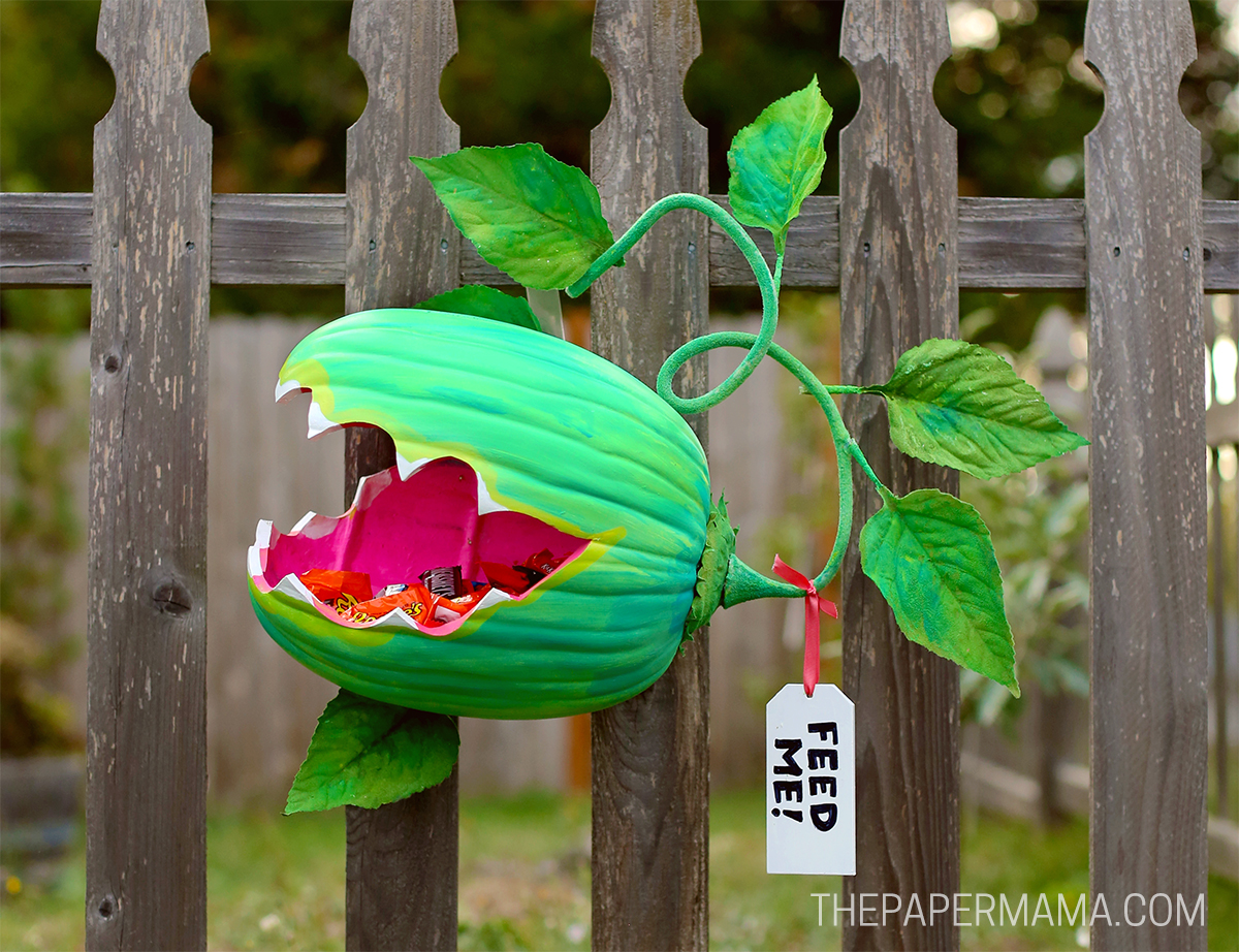 Venus Fly Trap Pumpkin Candy Holder from The Paper Mama