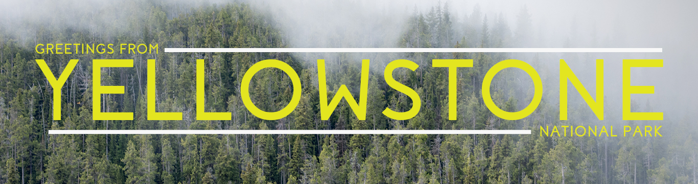 Yellowstoneweb.jpg