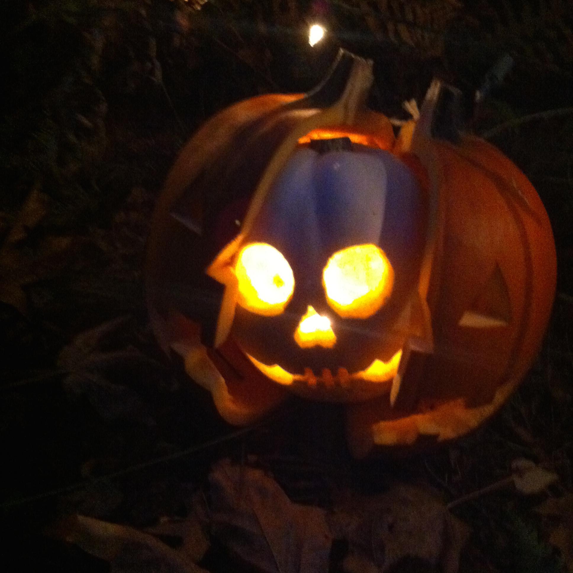 carved pumpkin with skull inside at bainbridge gardens annual pumpkin walk, BAINBRIDGE ISLAND