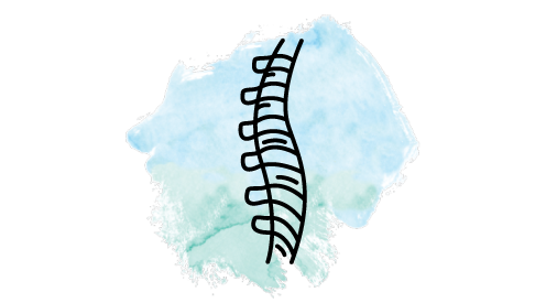 Spinal Function & Posture - SHC.png